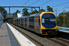 Bound for Wyong (jamesmp) Tags: cityrail sydneytrains nswtrains staterailauthority railcorp unitedgroup agoninanandco electricmultipleunit outersuburbancarriage oscar intercitytrain interurbantrain electrictrain berowra newsouthwales australia