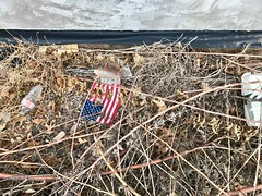 Project 365 / 2018: Day 21 (STREET MASTER) Tags: garbage alley rubbish foundobjects trash americana americantypology landscape street americanflag texas environment dallastexas