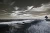 IMG_1872 (Dan Correia) Tags: marthasvineyard island ocean harbor clouds reflection lighthouse infrared photoshop canonef1740mmf4lusm 15fav addme200 topv333 510fav 1025fav topv555 topv777