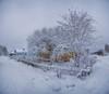 с.Верхняя Тойма (Alexey Yunicyn vk.com/yunicyn) Tags: дом дерево снег зима улица снежноедерево панорама nikonrussia nikon