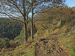 Hunter's Path, Teign Gorge, near Sharp Tor (Philip_Goddard) Tags: europe unitedkingdom britain british britishisles greatbritain uk england southwestengland devon dartmoornationalpark teignvalley teigngorge hunterspath sharptor drewsteignton