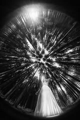 Shinning (AdisX   Andrius Maciunas) Tags: wood girl alone one sky trees light lines lights shadow shadows fisheye sad samyang 8mm f35 nature andriusmačiūnas maciunas adisx wedding bride white elegant tale fairytale