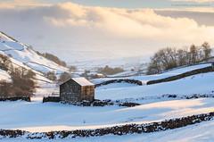 Swaledale Winter (calderdalefoto) Tags: winter snow cold landscape barn barns swaledale yorkshire dales