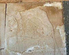 Nimrud Palace (6).jpg (tobeytravels) Tags: assyrian palace kalhu calah levekh zigararat lamassu throneroom shalmaneser ashurnasirpal layard stele nabu enli unesco