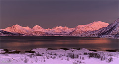 Pink glow, Norway (AdelheidS Photography) Tags: red adelheidsphotography adelheidsmitt adelheidspictures norway norge noorwegen norwegen noruega norvegia nordic norvege norden northnorway bluehour pinkhour kvaløy sommarøy sommarøya troms tromsø mountains coast glow alpenglow snow winter winterbeauty sunset evening arcticcircle 69° viewpoint canoneos6d canonf4l2470mm scandinavia lapland