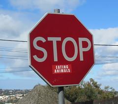 Stop eating (Américo Meira) Tags: portugal sintra placa