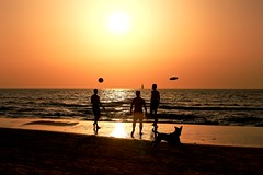 Everybody playing on the beach at sunset - Tel-Aviv - Follow me on Instagram:  @lior_leibler22 (Lior. L) Tags: everybodyplayingonthebeachatsunsettelaviv playing beach sunset telaviv people dog telavivbeach israel ball frisbee