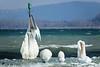 Balise de l'entrée de la Thièle ! (jean-daniel david) Tags: hiver lac lacdeneuchâtel gel glace blanc paysage suisse suisseromande switzerland yverdonlesbains nature