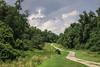 Long Walk (Janine J. Nelson) Tags: walk path winding windyroad nature
