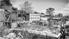 Middle Farm . (wayman2011) Tags: f2 fujifilmxf18mm lightroomfujifilmxt10 wayman2011 bwlandscapes mono rural farms villages winter snow pennines dales teesdale stainton countydurham uk