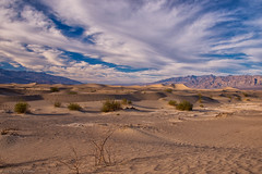 Sand and Sky (SandyK29) Tags: sky sand sanddunes dramaticsky deathvalley mesquitesanddunes clouds brush winter california desert stovepipewells nature beautyinnature beauty golden goldenlight goldendunes mountains panamintmountains