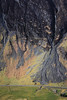 Scree (Russell-Davies) Tags: scree glencoe scotland uk highlands munro mountain aonacheagach threesisters