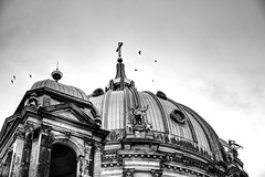 Birds over Berlin's dome (petermüller21) Tags: