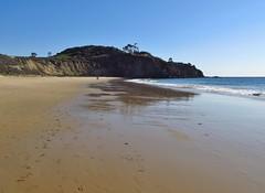 Crystal Cove State Park (Jasperdo) Tags: crystalcovestatepark statepark crystalcove california orangecounty beach sand pacificocean