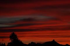 Sunset 2 1 18 #50 (Az Skies Photography) Tags: sun set sunset dusk twilight nightfall cloud clouds sky skyline skyscape rio rico arizona az riorico rioricoaz arizonasky arizonaskyline arizonaskyscape arizonasunset red orange gold golden salmon black february 1 2018 february12018 2118 212018 canon eos 80d canoneos80d eos80d canon80d