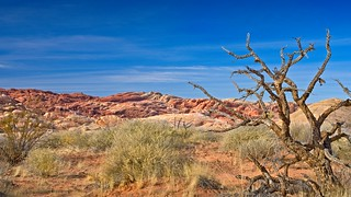 Valley of Fire  5701 C
