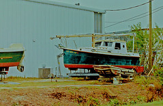 Some Boats at the Antique Restoration Yard, 49th Street, Clearwater Florida (gg1electrice60) Tags: boats sailboat sterlingequipcompany sterlingequipmentco antiquerestorationyard twosigns secontractorsinc truckstorageyard 8135357629 clearwaterflorida pinellascounty pinellaspark clearwater florida fl unitedstates usa us america 1112549thstreet 49thstn countyroad611 cr611 pinellascountyrd611 building rowboat skiff outboard outboardmotor sail trailers telephonepoles trees grass tinyflowers dolly airconditioner cyclonefence fence