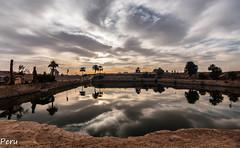 Lago sagrado (Perurena) Tags: lago lake agua water estanque cielo sky nubes clouds nuboso cloudy amanecer amencer palmeras arboles trees vegetación templo temple sagrado sacred karnak egipto