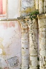 Saint Germain de Secqueval (•Nicolas•) Tags: nicolasthomas detail columns chapel chapelle colonnes abandoned decay ivy ruins m9 color decoration monument history church ruine abandonné lierre couleur texture