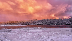 Fire in the sky. (Paul Rioux) Tags: nature morning sunrise daybreak dawn sun clouds pink orange wild winter snow cold esquimaltlagoon waterfront seashore seaside forest trees prioux purple reflection
