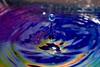 IMG_2590 (kontorousisjohn) Tags: waterdropphotography macrophotography