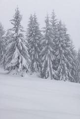 Slivnica (happy.apple) Tags: cerknica slovenia si slovenija landscape winter snow slivnica snowstorm sneg zima notranjska geotagged