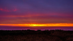 Sunset in Sea Ranch, California (Seymour Lu) Tags: