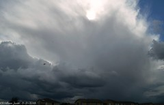 Thunderstorms Erupt Around California (3-3-2018) #80 (54StorminWillyGJ54) Tags: californiarain californiathunderstorms thunderstorm thunderstorms storms storm winter2018 march2018 weneedrain stormyweather stormchasing stormchaser tstorms stormchasers severeweather