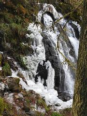 La grande cascade de Tendon1803051334-4 (opa guy) Tags: continentsetpays europe france grandest lorraine vosges grandecascadedetendon