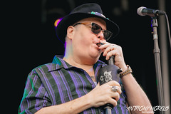 Blues Traveler // Founders Fest 2017 (Anthony Norkus Photography) Tags: bluestraveler blues traveler band live concert jam rock johnpopper john popper harmonica foundersfest2017 founders fest 2017 foundersfest brewing co foundersbrewingco brewery grandrapids grand rapids mi michigan us usa street party streetparty festival beer summer 10th annual anthonynorkus anthony tony norkus photo photography pic pics photos norkusa