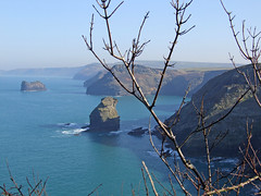 Coast near Boscastle from Firebeacon Hill (Philip_Goddard) Tags: twigs boscastle firebeaconhill cornwall coast northcoast coastpath southwestcoastpath southwestway landscapes scenery southwestengland england unitedkingdom britain british britishisles greatbritain uk europe