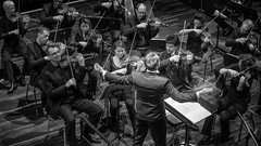 Das SWR Symphonieorchester am 26. Januar 2018 im Strawinsky Saal in Donaueschingen (HeinzDS) Tags: swr symphonieorchester musik music stage live classic donaueschingen donauhallen strawinskysaal