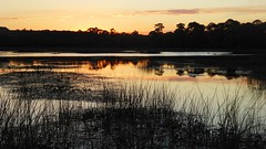 20171121 (65) Sunset Winding Waters West Palm Beach PBC FL USA (FRABJOUS DAZE - PHOTO BLOG) Tags: windingwaters westpalmbeach wpb pbc palmbeachcounty florida fl fla usa yhdysvallat luontokuva luontokuvaus naturephoto naturephotography sunset sundown auringonlasku