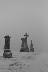 Mountain View Cemetery (w.d.worden) Tags: mountain view cemetery