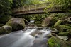 Flow (Antony Eley) Tags: water river cascades rapids flowing rocks lush green moss bridge wairereriver matamata