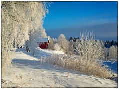 Nannestad 9. januar 2018 (#5) (Krogen) Tags: norge norway norwegen akershus romerike nannestad winter vinter landscape landskap krogen fujifilmx100