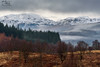 Achray Forest & The Trossachs (Craig Hollis) Tags: achray forest trossachs loch lomond national park mountains scotland snow winter landscape craig hollis