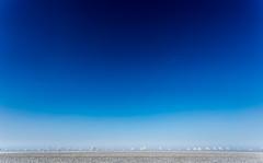 out of the blue (++sepp++) Tags: landschaft landscape landschaftsfotografie bayern bavaria deutschland germany winter raureif hoarfrost bäume trees alley allee blau blue sonnig sunny mininalistisch minimalism