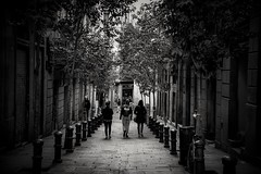 Las 3 Amigas . ( The Three Friends ) (Alex Nebot) Tags: barcelona barcelone gotic gotico chicas girls bn monocromo nikon nikonista d7200 street streetphoto callejerrocarrer calle city citta ciudad ciutat pilones