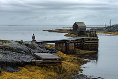 Blue Rocks - Nova Scotia (B.E.K.) Tags: blue rocks novascotia dock pier shack fishing raven seaweed ocean water overcast sky clouds shore outdoor landscape nikond800 nikon2470f28