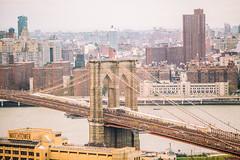 The Tallest Man on Earth (Thomas Hawk) Tags: america brooklyn brooklynbridge nyc newyork newyorkcity usa unitedstates unitedstatesofamerica architecture bridge fav10 fav25 fav50