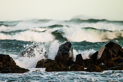 Rolling in (langdon10) Tags: atsea atlanticocean canada canon70d novascotia shoreline storm surf ocean outdoors waves winter weeklythemes selectivefocus