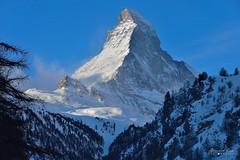 Matterhorn-180106-006-Bernard-Grua (Photos de voyages, d'expéditions et de reportages) Tags: montagne moutain cervin matterhorn switzerland winter bernardgrua bluehour snow zermatt valais hautvalais wallis oberwallis