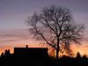 08:33AM (ЕгорЖуравлёв) Tags: latvia latvija smarde smārde january 2018 sunrise латвия смарде утро рассвет