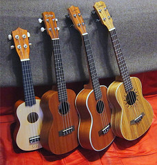 Size_Matters-m (Guyser1) Tags: ukulele ukuleles sopranoukulele concertukulele tenorukulele westyellowstone music musicalinstrument canonpowershots95 pointandshoot