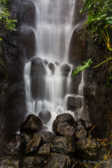 Rainforest Falls (JKmedia) Tags: eden project cornwall 2018 boultonphotography nature biome dome artificial climate manmade trees water waterfall slow exposure rocks wet splash droplet