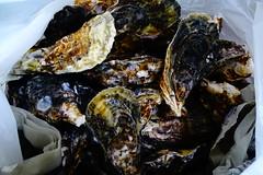DSC00017 (muzina_shanghai) Tags: 牡蠣 蒸し牡蠣 oyster