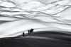 Terra incognita... (Ody on the mount) Tags: anlässe berge dolomiten em5 italien mzuiko1250 omd olympus schnee schneeschuhtour sennes südtirol urlaub wege winter bw monochrome mountains sw