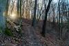 Mossy Ridge Trail Sunset (mikerhicks) Tags: harpethtraceestates hiking mossyridgetrail nashville nature percywarnerpark sonya6500 tennessee usa unitedstates winter outdoors sunset exif:aperture=ƒ80 exif:lens=epz18105mmf4goss geo:country=unitedstates exif:make=sony geo:state=tennessee geo:lat=36071088333333 exif:focallength=18mm exif:isospeed=800 geo:city=nashville geo:location=harpethtraceestates geo:lon=86885933333333 camera:make=sony camera:model=ilce6500 exif:model=ilce6500