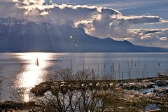 Sailing in Vevey (somabiswas) Tags: vevey lacleman sailing alps landscape waterscape switzerland suisse vaud lakes